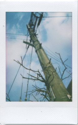 Scan100014
